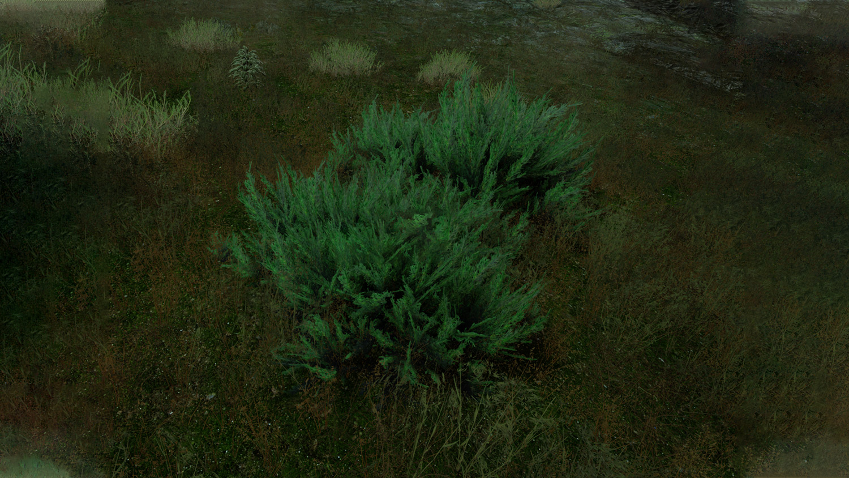 Mortal Online Map - Common Myrtus