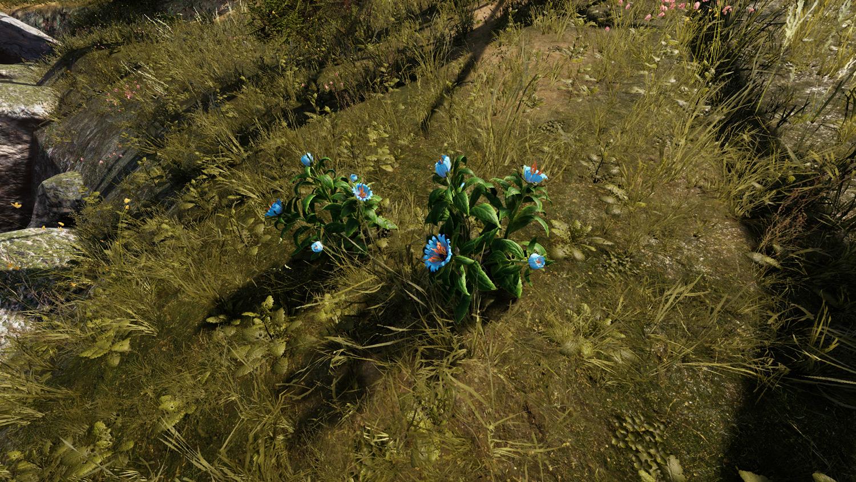 Mortal Online Map - Lysimachia Arvensis