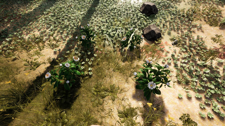 Mortal Online Map - Convolvulaceae