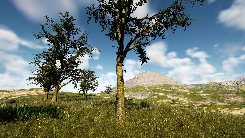 Mortal Online Map - Spongewood