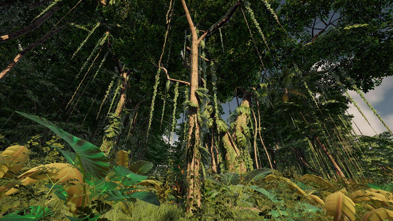 Mortal Online Map - Brownwood