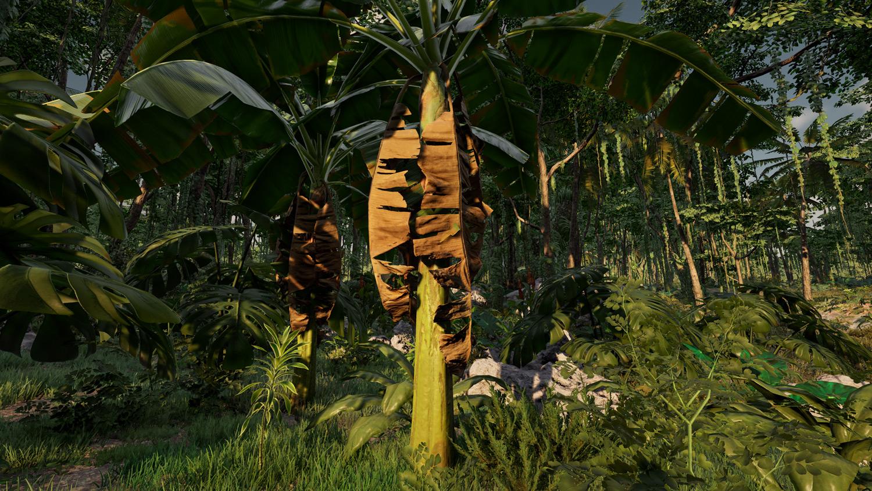 Mortal Online Map - Muse Fruit